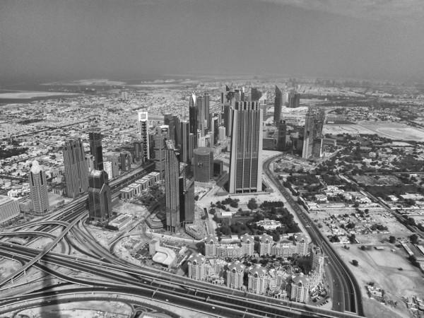 Est-il plus profitable de bâtir des maisons ou des condominiums dans les métropoles?