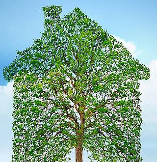 Construction : les tendances de l'habitat durable en 2020 (et au-delà !)