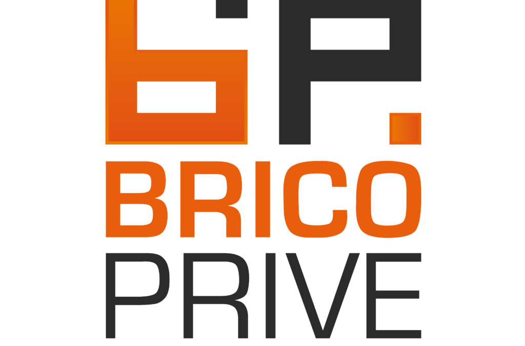 Brico Privé, le nouveau concept qui cartonne